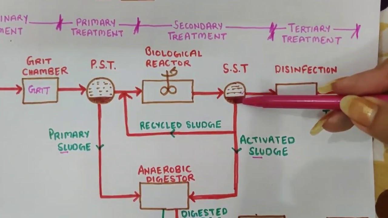 Flow sheet of Sewage Treatment Plant/Flow Diagram of Wastewater Treatment  Plant - YouTubeYouTube