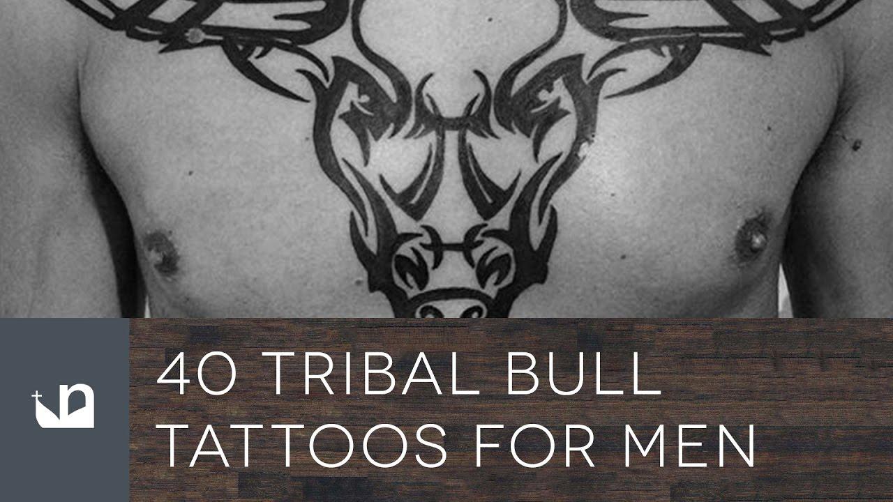 40 Tribal Bull Tattoos For Men Youtube