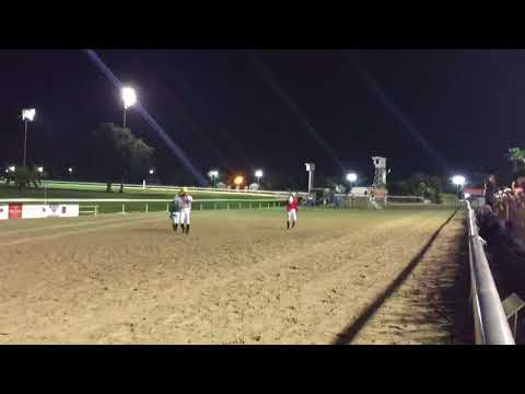 Ostrich race at the Fair Grounds Race Course & Slots