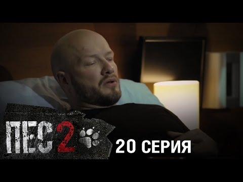 Сериал Пес - 6 серия