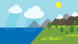 WATER CYCLE SONG   Science Music Video
