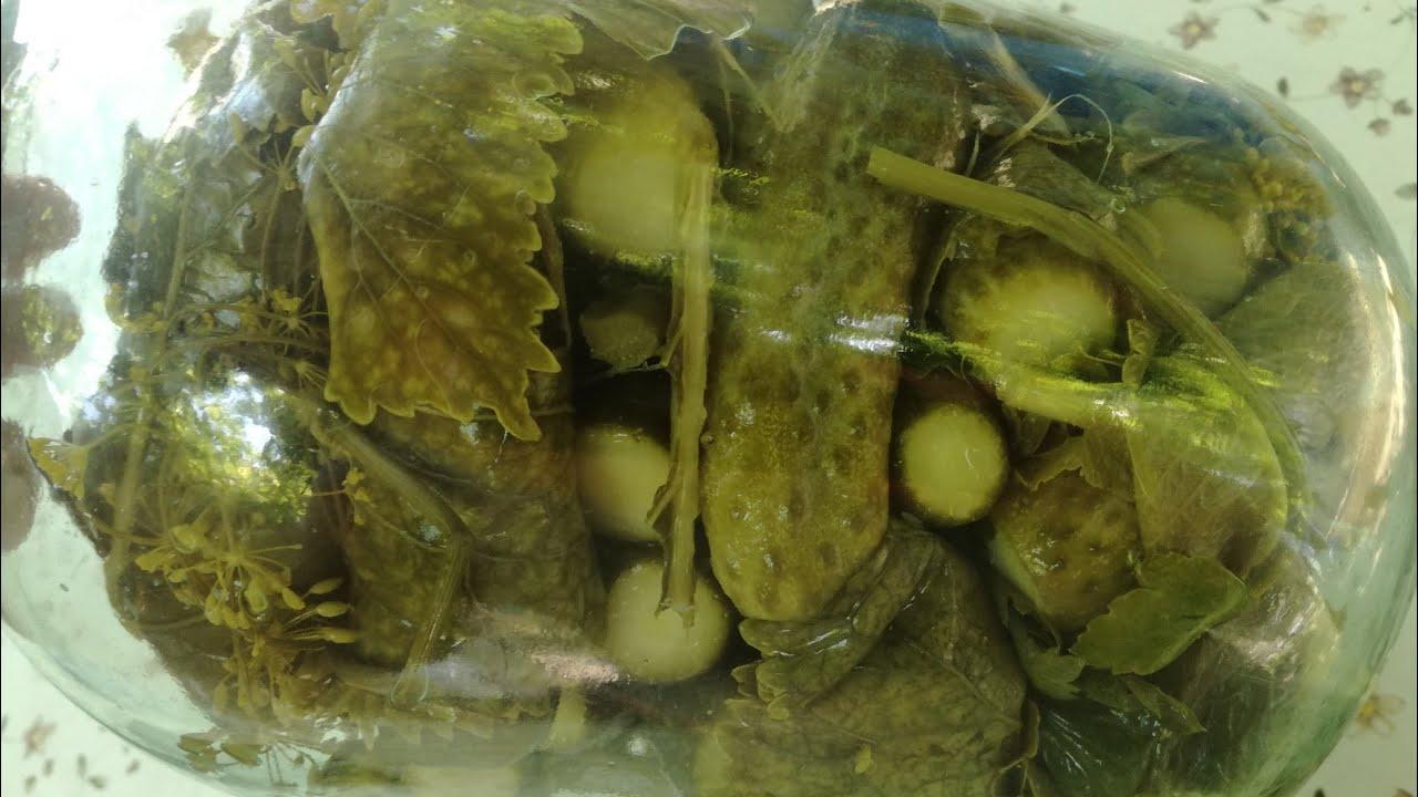 маринованые огурчики на спирту ,в хреновых листьях,срок годности не ограничен,бомбический рецепт .