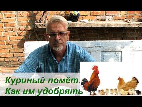 Куриный помёт. Как им удобрять ������