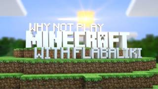 Why Not Play Minecraft - Speed Building