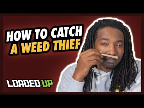 5 Ways To Catch A Weed Thief!