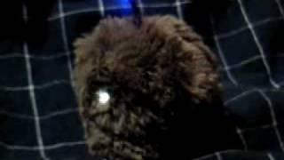 「電脳コイル」より 電脳ペット モジョ
