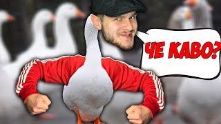 САМЫЙ ОПАСНЫЙ ГУСЬ НА РАЙОНЕ \\ Untitled Goose Game #2