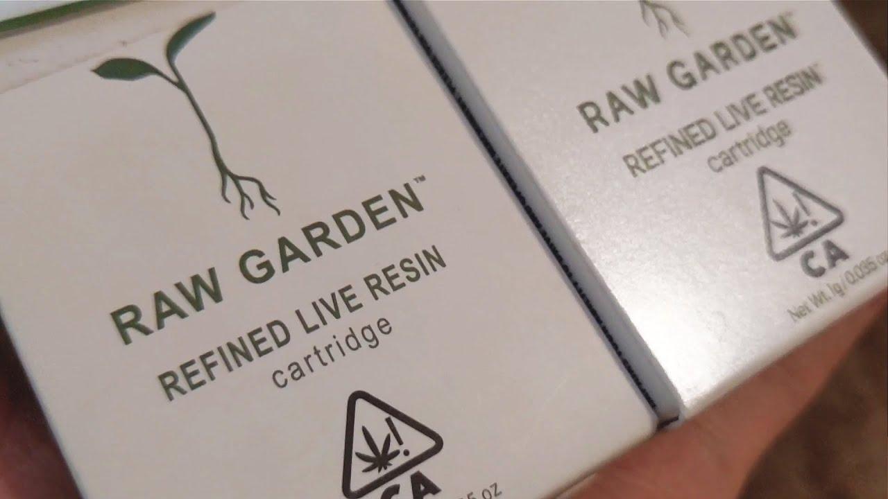 My Friend Gave Me A Fake Raw Garden Cartridge Youtube