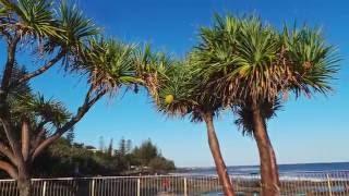116. Wspaniele miejsce dla rodzin Kings Beach Caloundra w Australii.