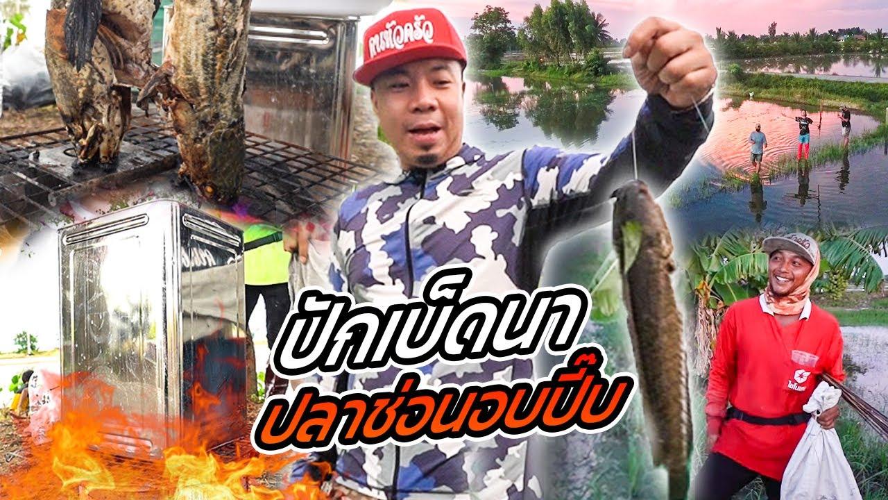 Download ศึกล้างตา!! ท้าปักเบ็ดนา ล่าปลาช่อนนา ทำอบปี๊บ !!