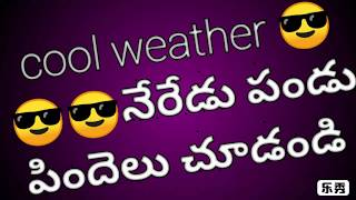 Cool weather neredu pallu