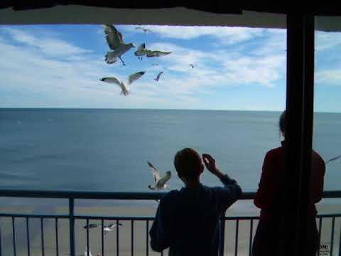 John and Jess Kemp feeding birds from balcony in Myrtle Beach, January 2006