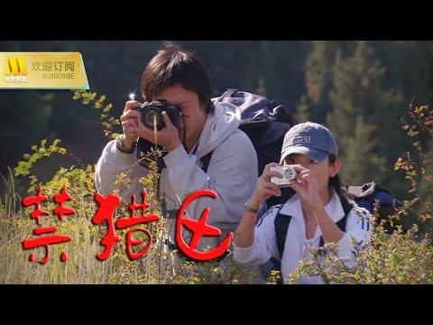 【1080P Full Movie】《禁猎区》准葛尔盆地上盗猎与反盗正面冲突的纪实纪录片( 房子斌 / 章雯淇 / 刘新)