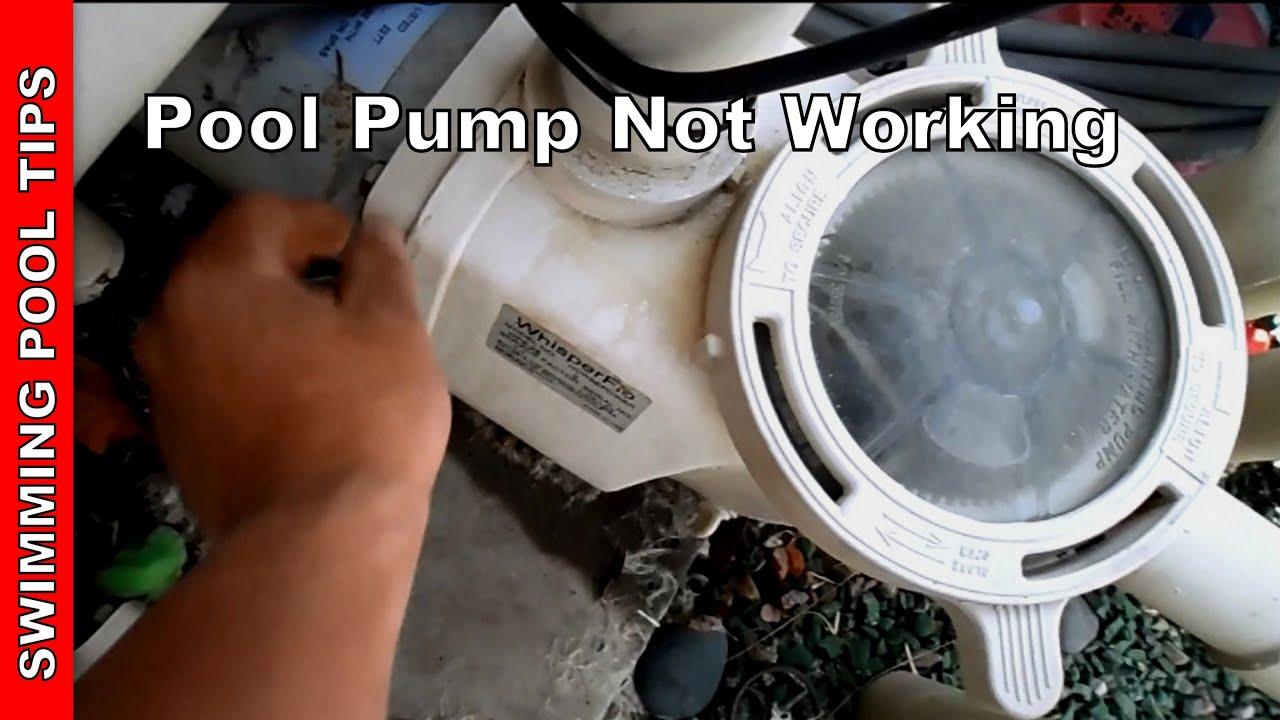 well pump not priming genie garage door wiring diagram pool working part 1 youtube