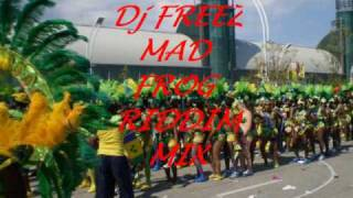 MAD FROG RIDDIM MIX   (DeeJay FREEZ, SOUL VIBES SOUND)