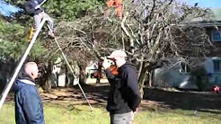 Hudson Landscape Contractors & Tree Care Specialist
