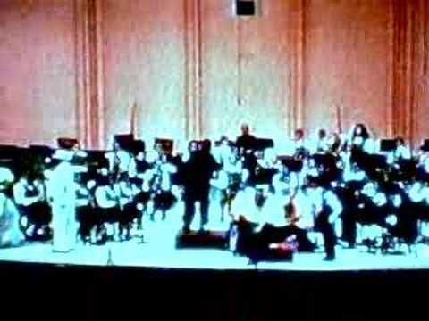 Banda Sinfónica Juvenil de Villa Palmeras