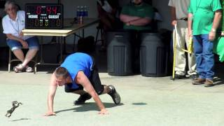 2010 Calaveras County Jumping Frog Jubilee
