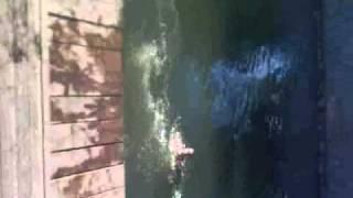 english vs eddy bega jumping