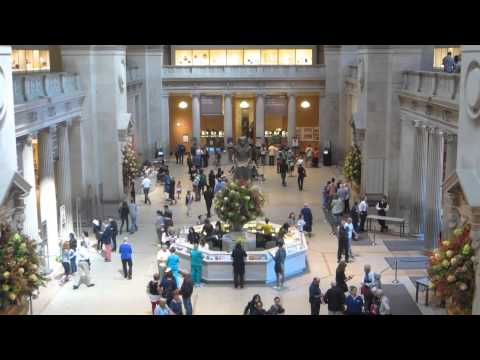 The Met Museum, New York - A McTraveller one-minute guide