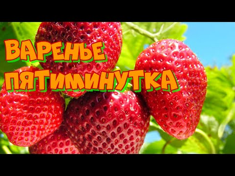 Клубничное варенье, рецепт пятиминутка с цельными ягодами на зиму