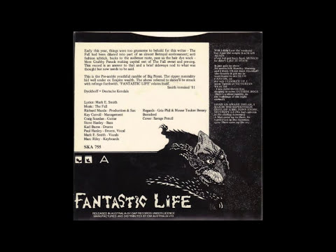 The Fall - Fantastic Life