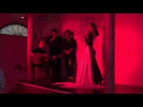 Casa del Arte Flamenco Granada Patricia Guerrero por Alegrias