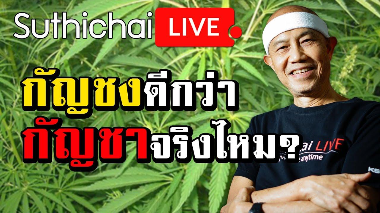 กัญชงดีกว่ากัญชาจริงไหม? : Suthichai live 29/07/2562