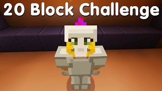 Minecraft PS4 - 20 Block Challenge - Portal Problems (21)