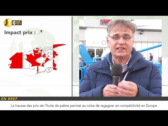 France : hausse de la prime physique du maïs !