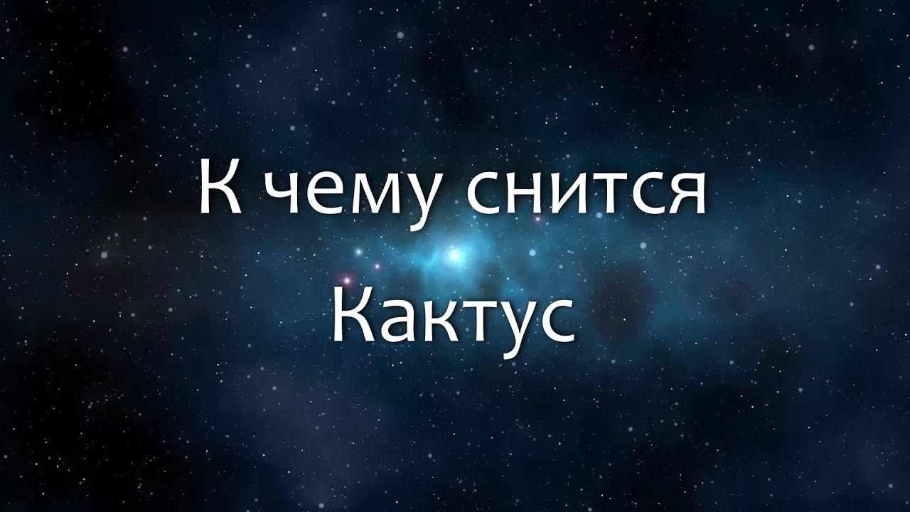 К чему снится Кактус (Сонник, Толкование снов)