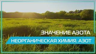 Видео 360   Значение азота. Неорганическая химия. Азот.