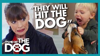 Victoria Worries Kids That Punch Their Dog At MAJOR Risk of Bites | It's Me or The Dog
