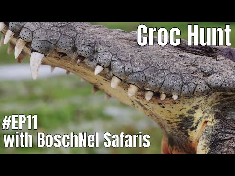 HunTech Ep11 - Dangerous Game Hunting In South Africa With Boschnel Safaris