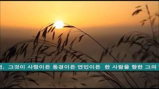 Down By The Salley Gardens - Irish Folk Song ...♪aaa (HD)  [Keumchi - 韓]
