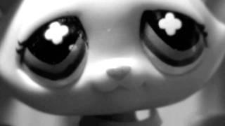LPS Avril Lavgine Innocence Music Video