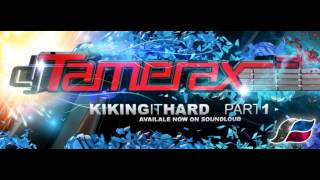 Tamerax - Kiking It Hard - Part 1 (2013 Hard Trance DJ Mix)