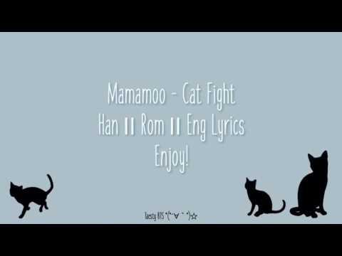 Mamamoo [마마무] - Cat Fight — [Color Coded in Han/Rom/Eng Lyrics]