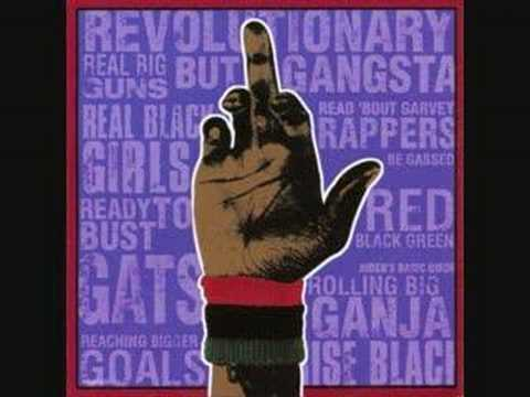 Dead Prez - Way of Life