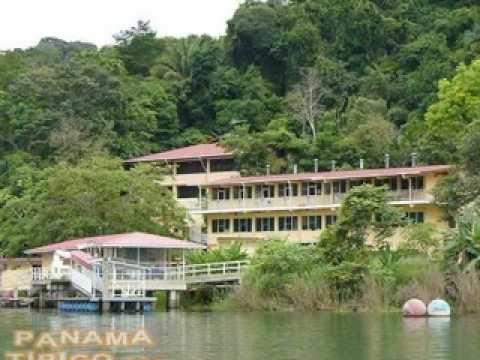 BARRO COLORADO ISLAND, ISLA DE PANAMA TOURS 1  BY VILLA MICHELLE A TRAVEL GUIDE IN PANAMA