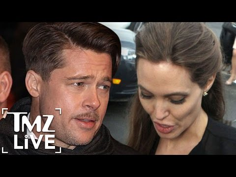 Brad Pitt & Angelina Jolie Strike Temporary Custody Deal (TMZ Live)