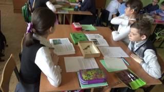 Урок биологии Пелевиной И.В.