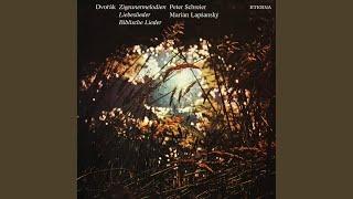 Gypsy Melodies, Op. 55, B. 104: No. 5, Reingestimmt sie Saiten