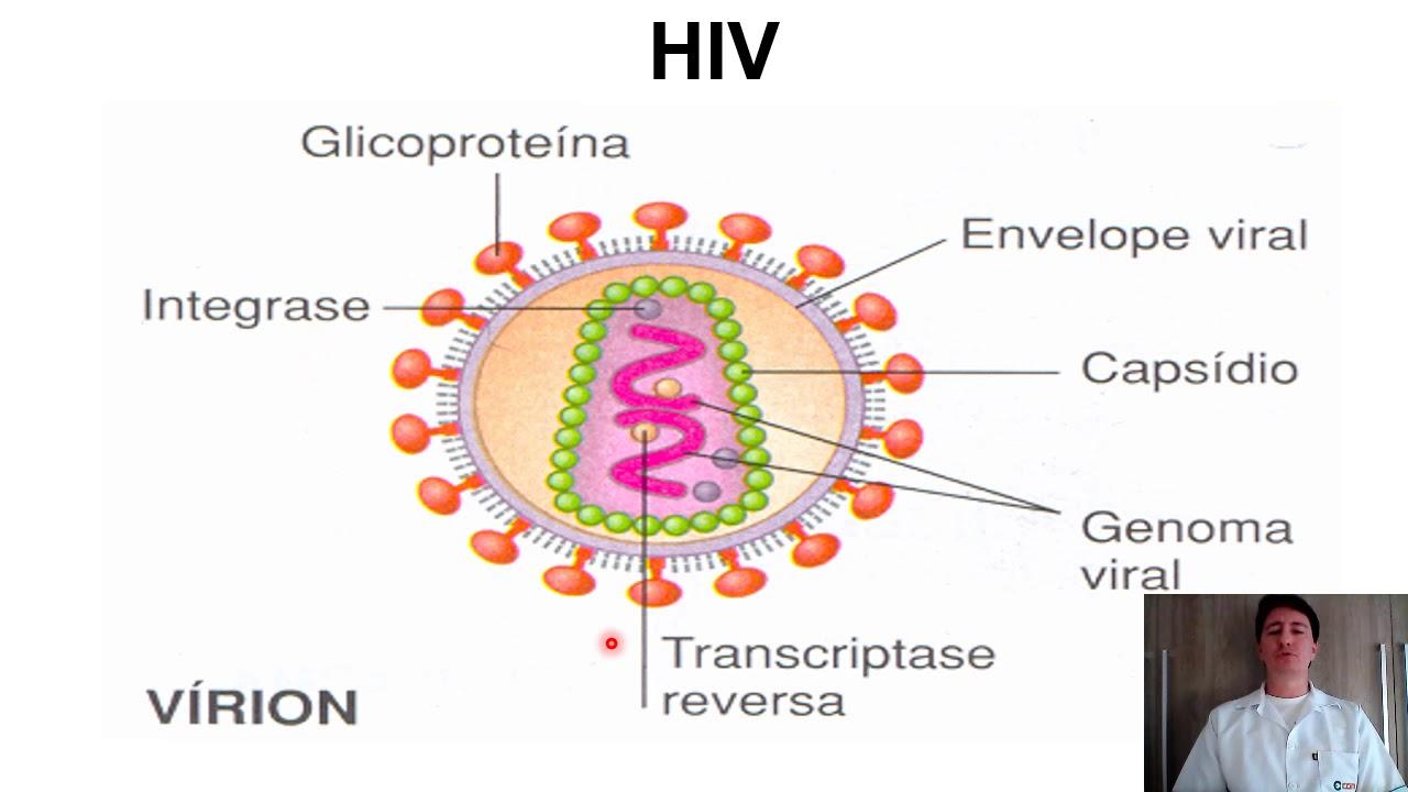 Coinfectia hiv hpv