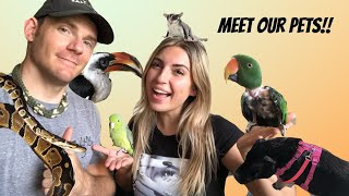 ANIMAL TOUR! Meet ALL of our PETS! OVER 30 !