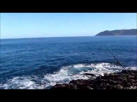NZ Fishing Far north 14