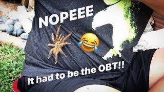 OBT tarantula climbed up my friend's shirt LOL !!! [BONUS VIDEO]