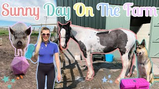 A Sunny Day With All The Animals | Lockdown Day 17 | Daily Farm Vlog | Lilpetchannel