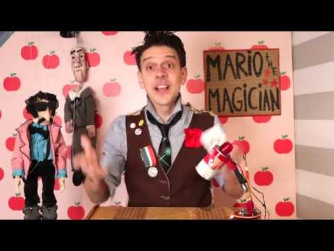 mario not to mention a magician essay