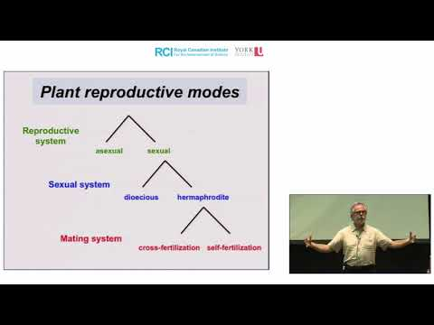 Evolution of Plant Sexual Diversity: Natural History to Genomics